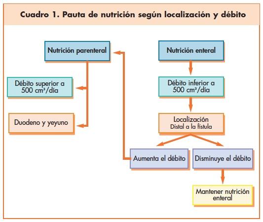 Pauta de nutrición según localización y débito